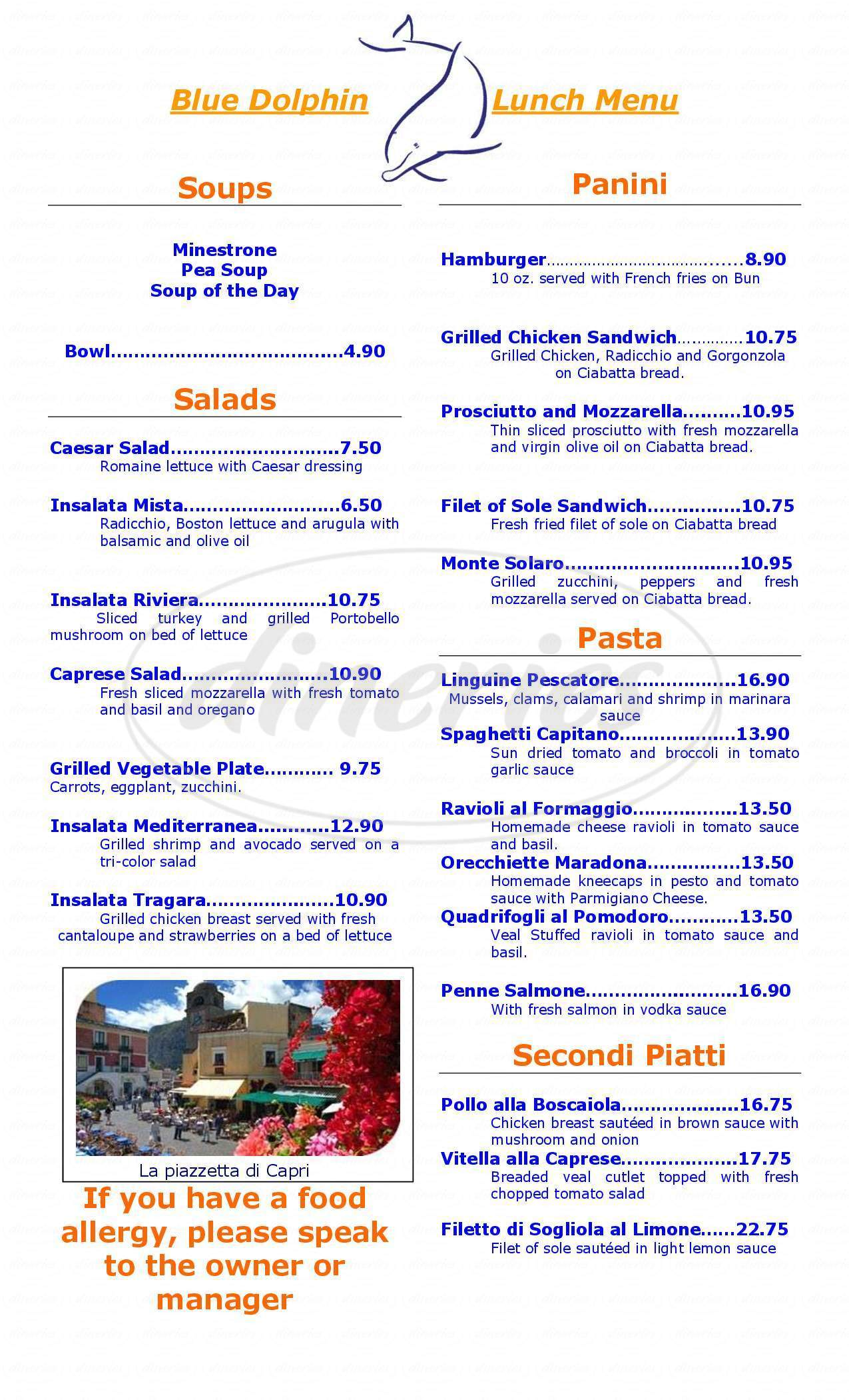 menu for Blue Dolphin Restaurant