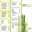 Green Bamboo menu thumbnail