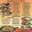 Chapala Mexican Restaurant menu thumbnail
