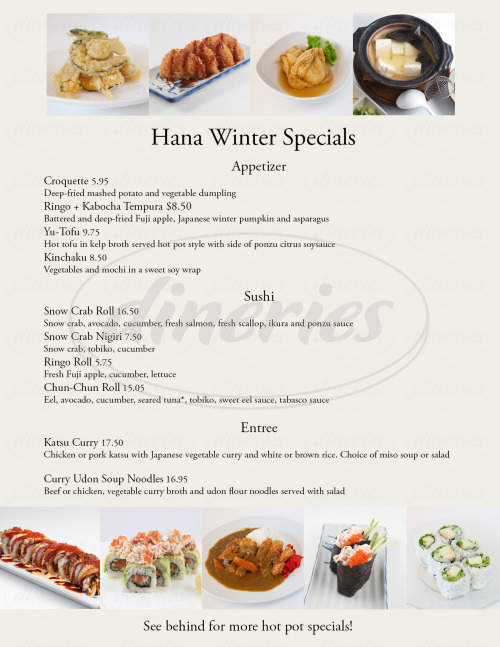 menu for Hana Japan