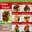 Ginza Express thumbnail menu